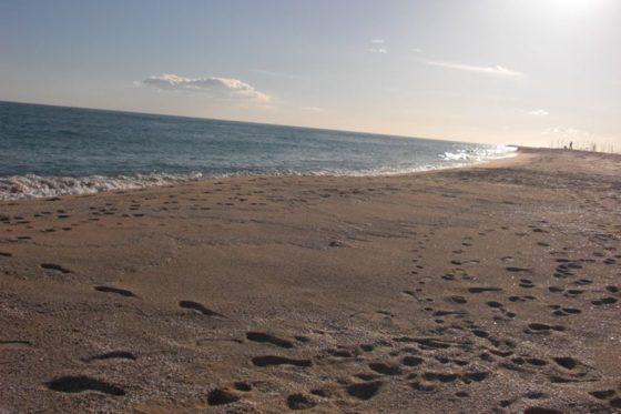 Strand in Caldetas
